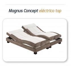 Somier Magnus Concept...